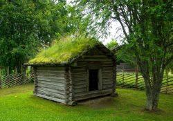 Hellere græs på taget end tag på græsset